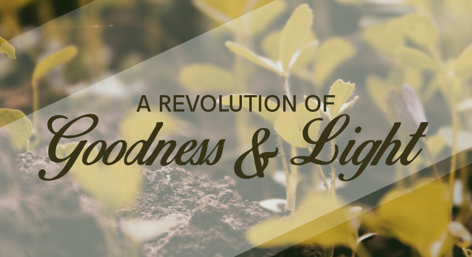 A Revolution of Goodness & Light